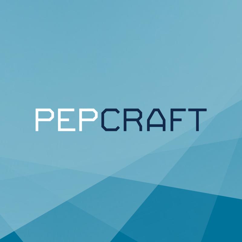 pepcraft logo blinkblink projekty graficzne